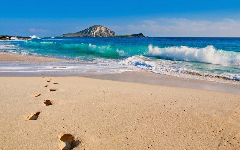 Oahu Circle Island Limo Tours
