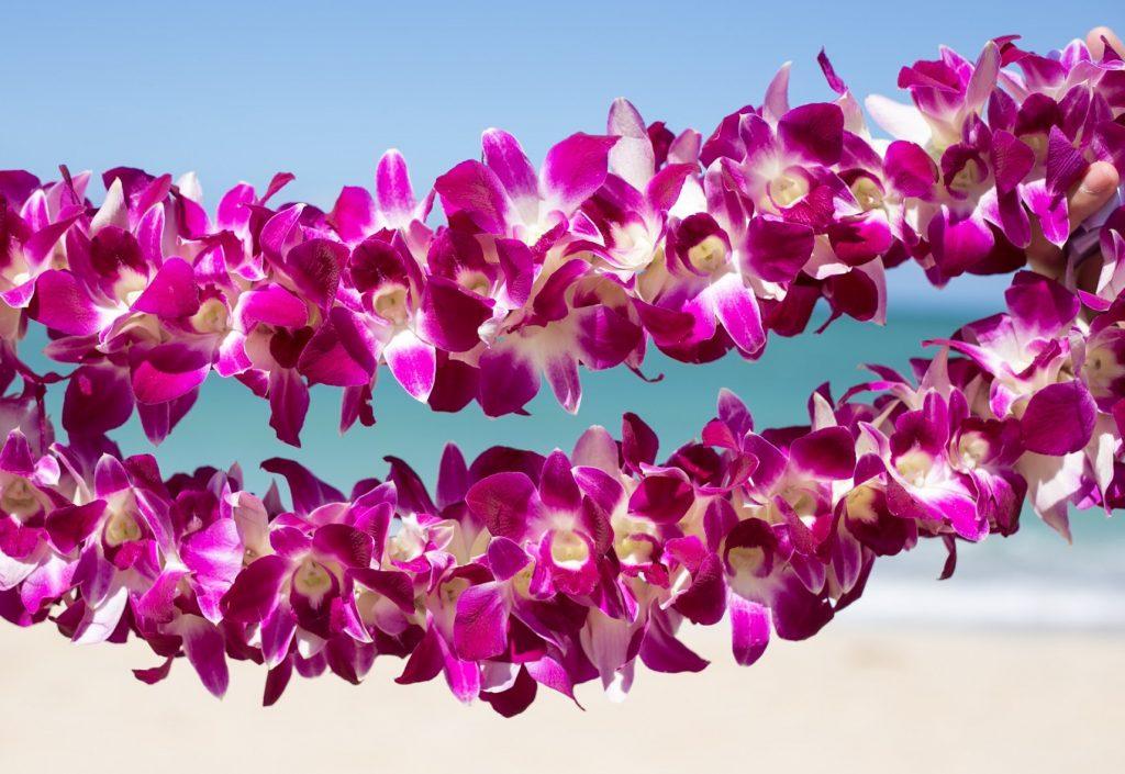Oahu Lei Greeting Service