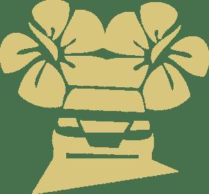 Hawaii Car Service Favicon (Gold)